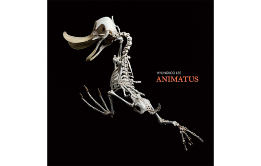 ANIMATUS : Hyungkoo Lee